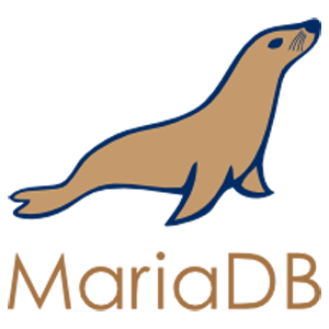 Connect Your Charts and Dashboards to a MARIADB Database